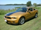 2010 Mustang V6 Coupé Gold